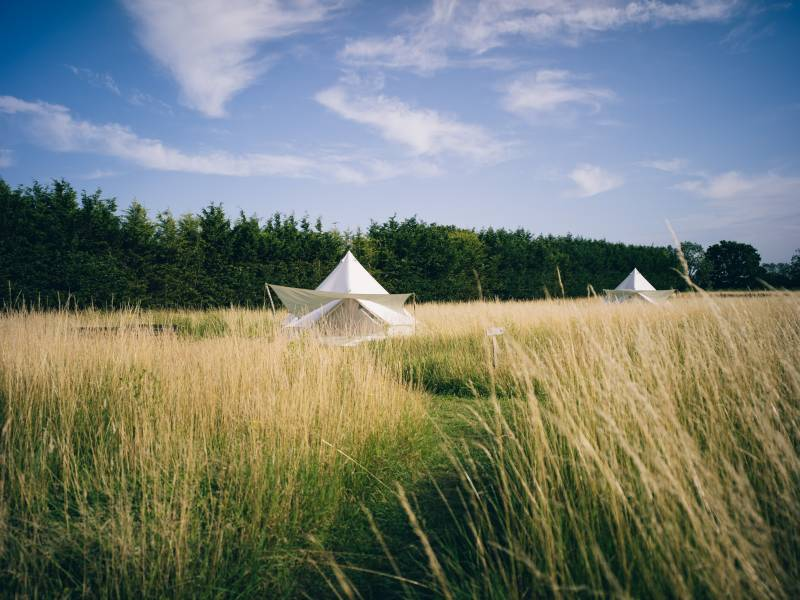 Picture of belltents in a field
