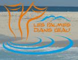 Les palmes dans l'eau