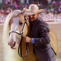 Taylor Hanes of Hanes Performance Horses specializes in breeding and showing some of the top AQHA hunt seat horses. He also trains Gypsy Vanner Horses.