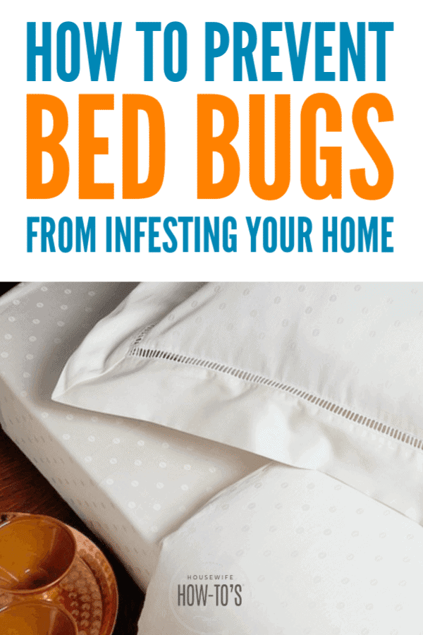 How to Prevent Bed Bugs - Simple steps to keep these pests out of your home for good #bedbugs #pests #bedroomcleaning #cleaning