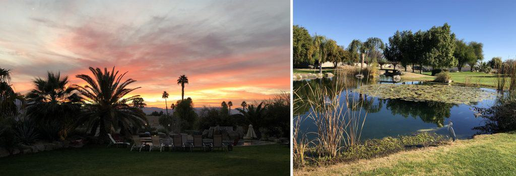 Images of Palm Springs: a sunset, and a pond.