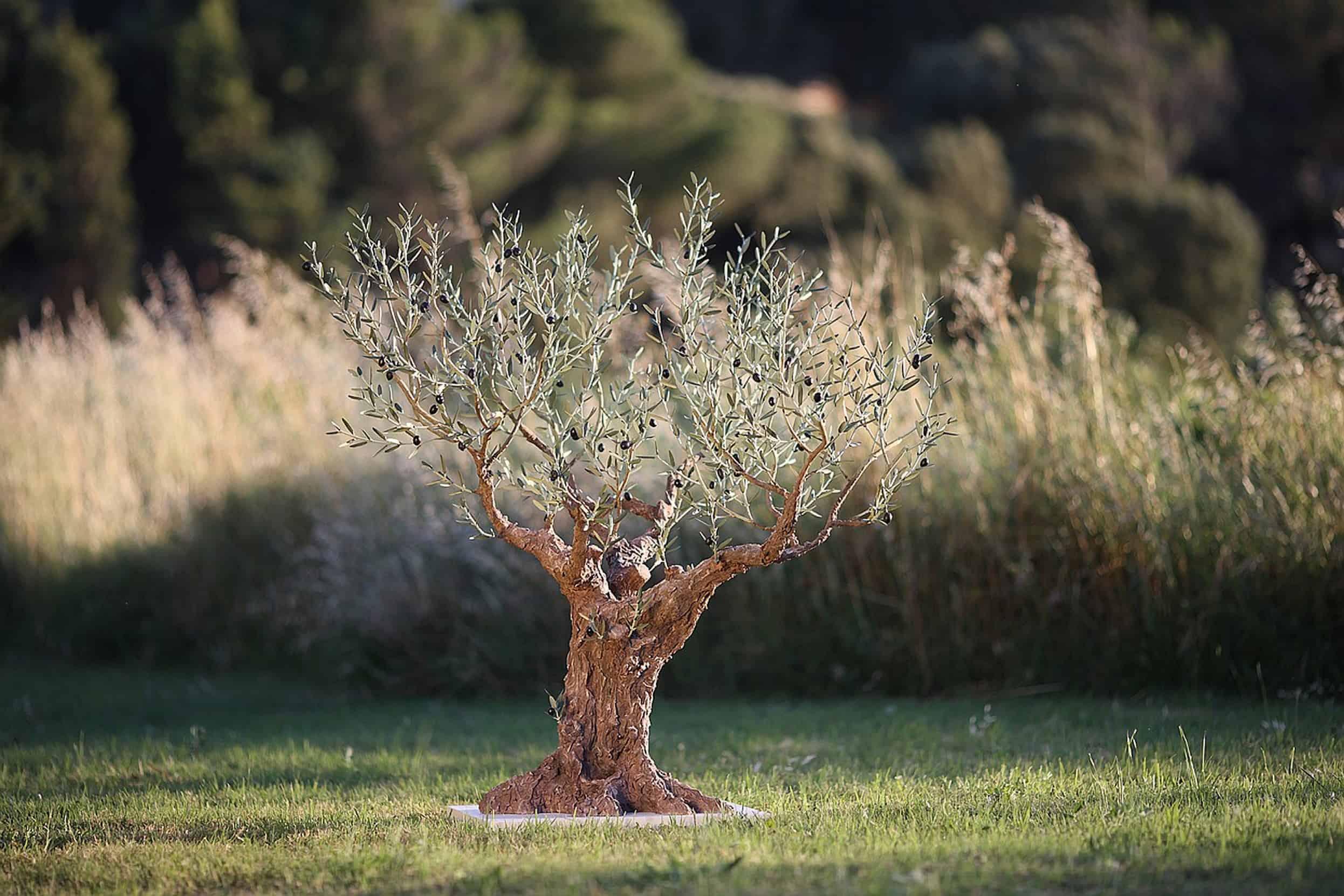 olivier-1.30-jardin-sur-socle-copy