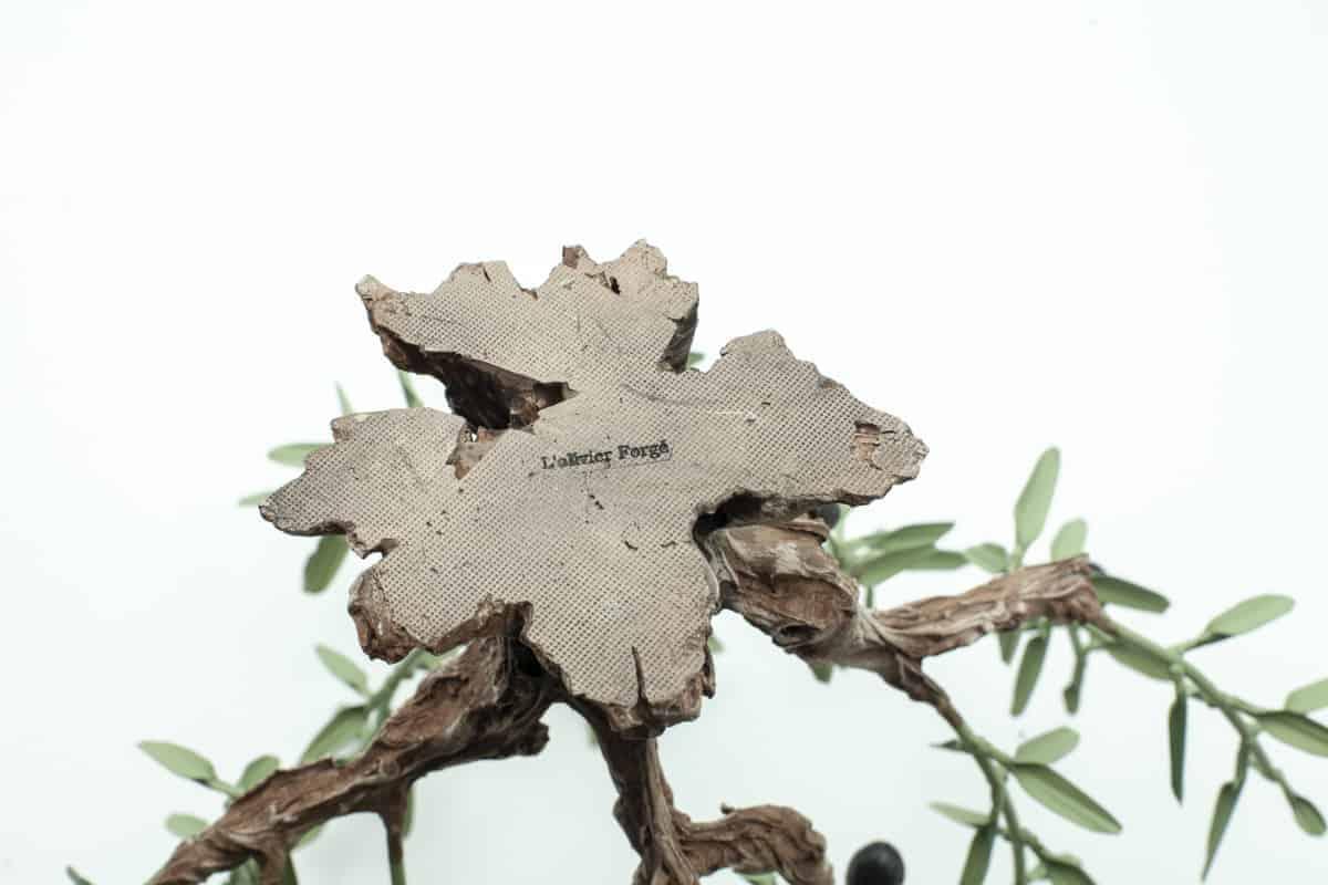 olivier-forge-sur-rocher-4668