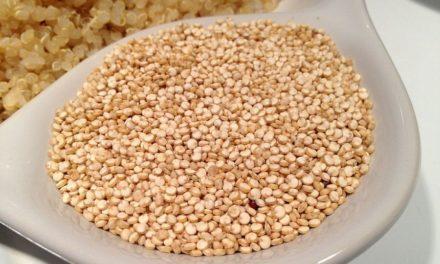 Le quinoa : graine, céréale, ou légume ?