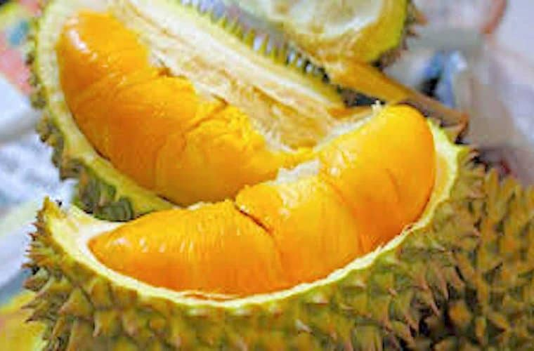 durian_1100x700_acf_cropped