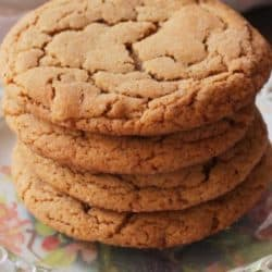 ginger cookies on plate pin