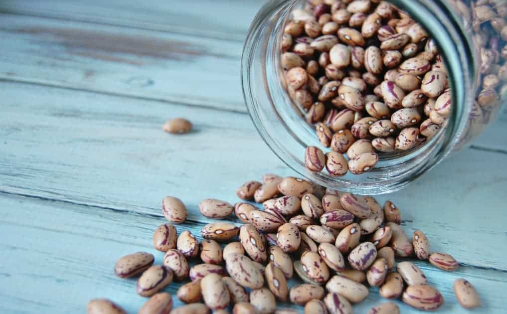 How to Soak, Cook, and Freeze Beans