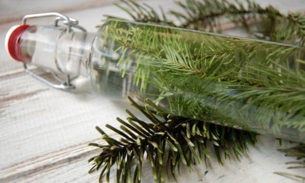 Rejuvenating Pine Vinegar Hair Rinse