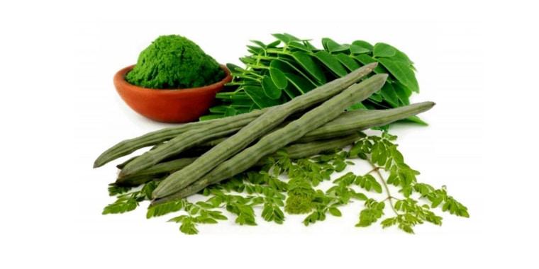 Chá de Moringa Oleifera: Para que Serve e os seus Benefícios?