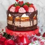 Strawberry Tuxedo Cake Recipe (video)