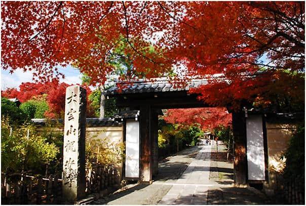 龍安寺のおすすめ観光ガイド!京都の石と苔の神秘を感じる!