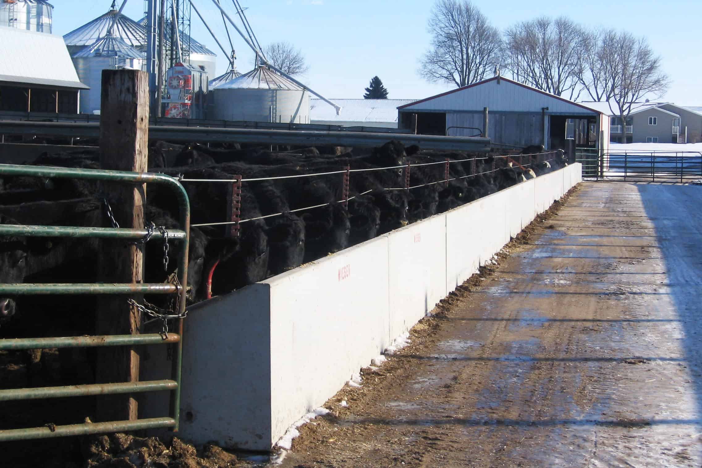 Bottems Straight Back Fenceline Feed Bunk Precast Concrete