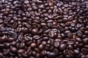 Oily coffee beans explained