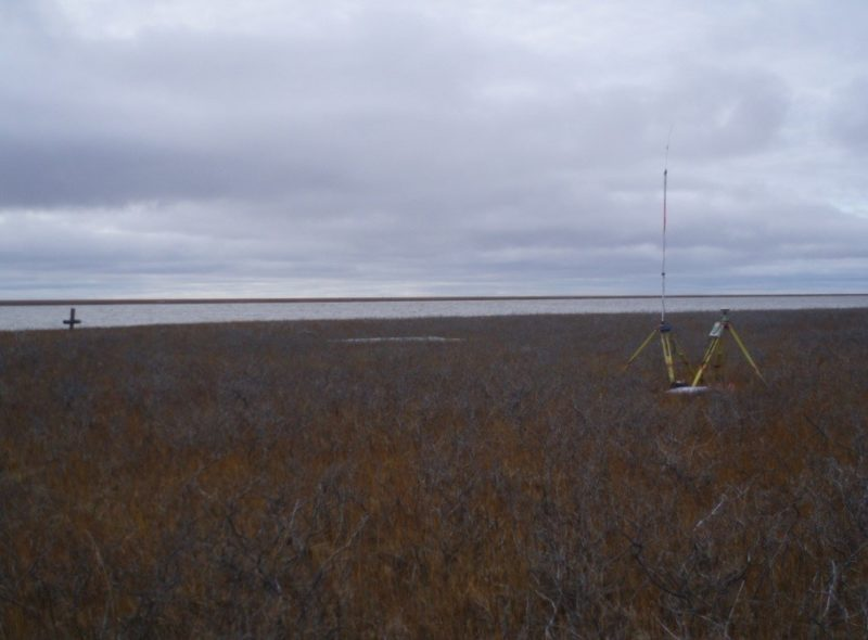 mackenzie delta survey