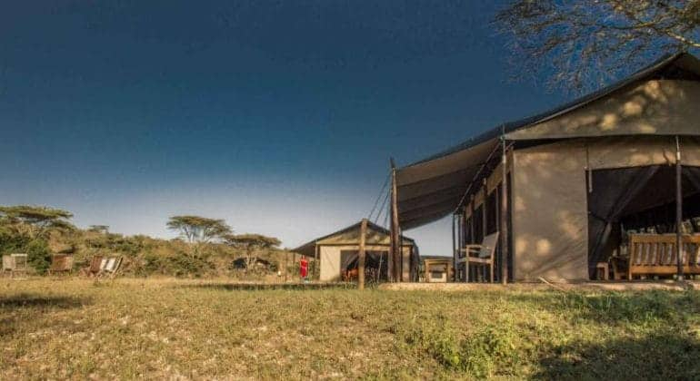 Porini Cheetah Camp