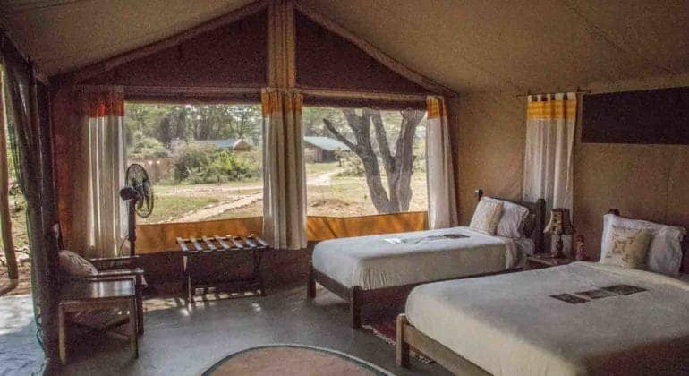 Porini Cheetah Camp Guest Tent