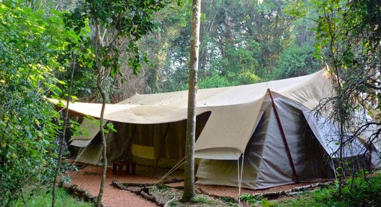 Masai Trails And Jan's Camp Tent View