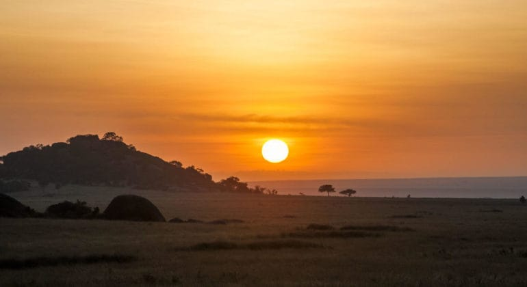 Serengeti Safari Camp View
