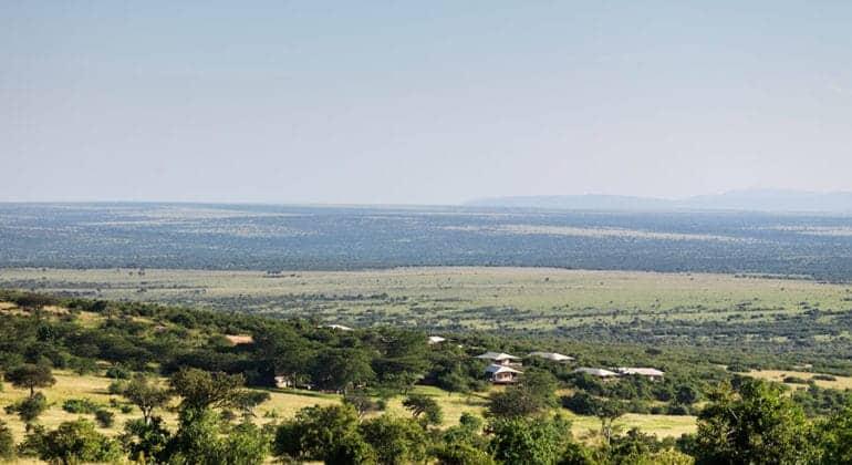 Mara Bushtops Aerial View