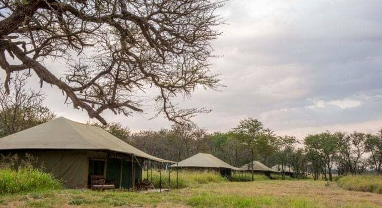 Naona Moru Camp Tent Overview