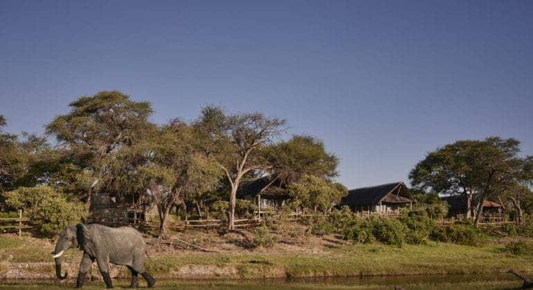 Belmond Savute Elephant Lodge View