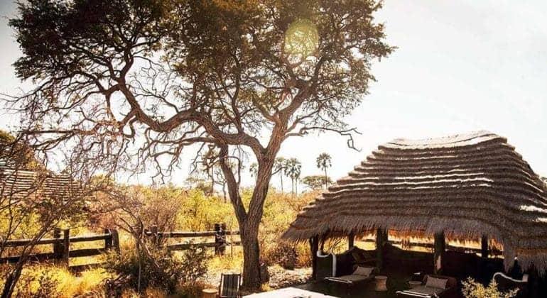 Camp Kalahari Poolside 1