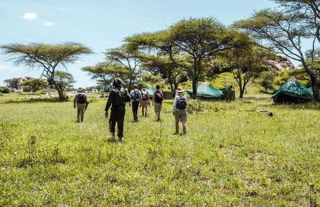Wayo Serengeti Walking Camp Tents