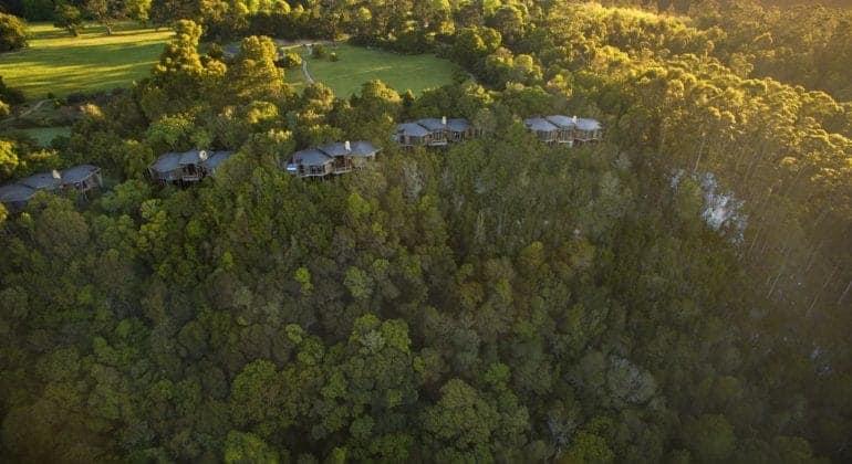Tsala Treetop Lodge Aerial View