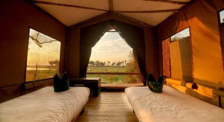 Oddballs' Camp Tent 1
