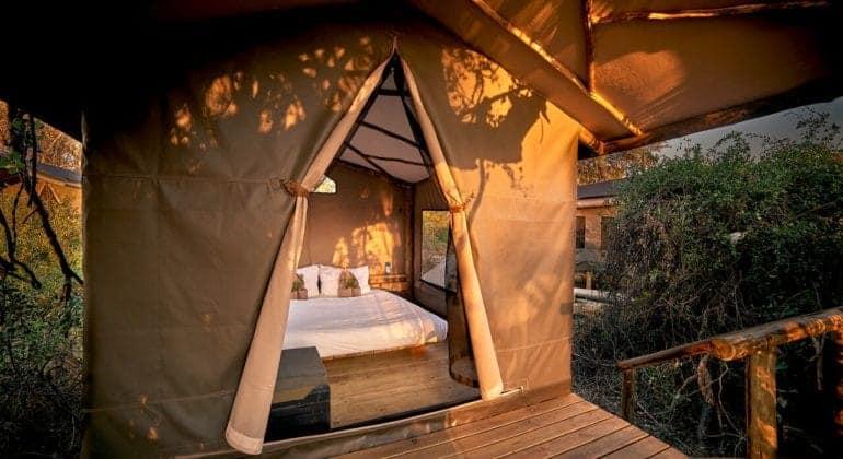 Oddballs' Camp Tent
