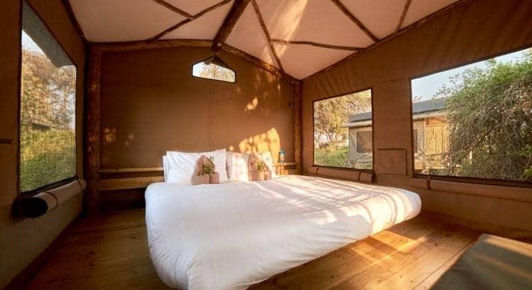 Oddballs' Camp Tent Interior