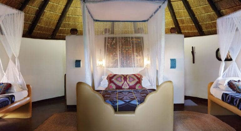 Planet Baobab Family Suite