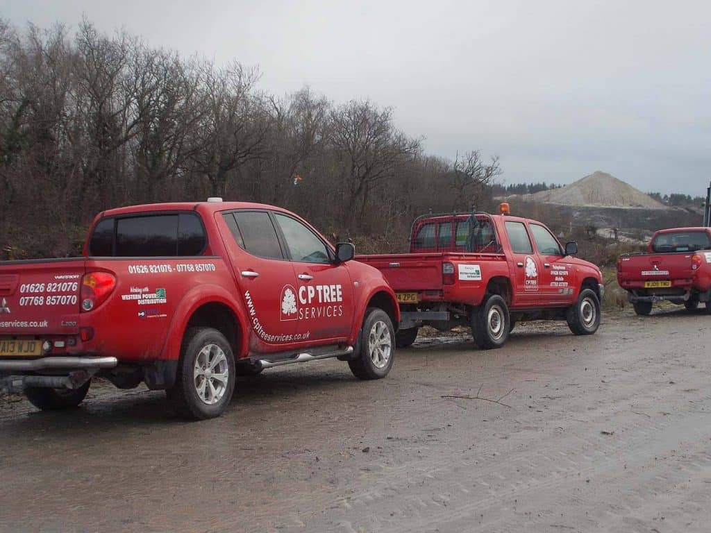 3 red cp tree services trucks in a line