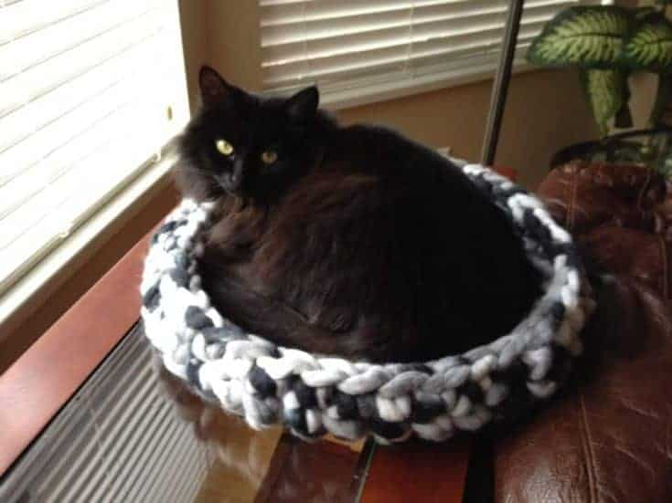 cat laying in crochet cat bed