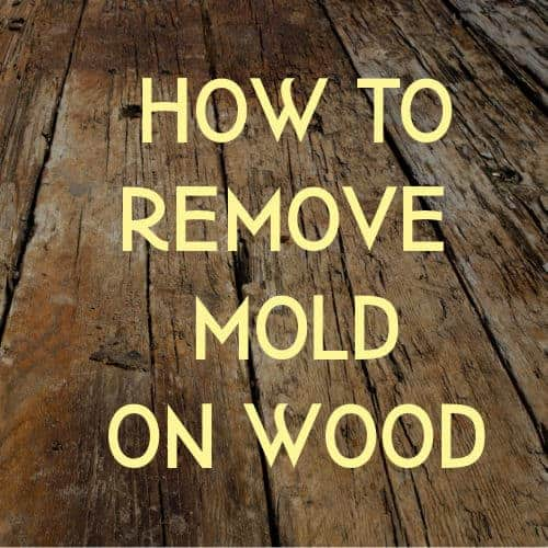 mold on wood instruction graphic