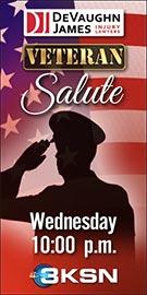 Veterans Salute Logo