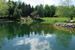 Pond Construction and Design