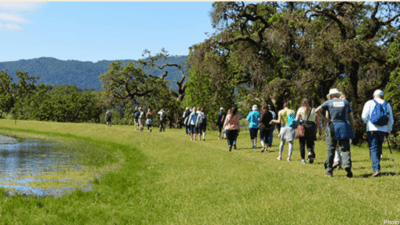 hiking the historic Kunde estate in Sonoma
