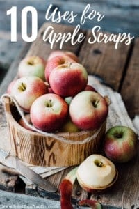 10 Uses for Apple Scraps
