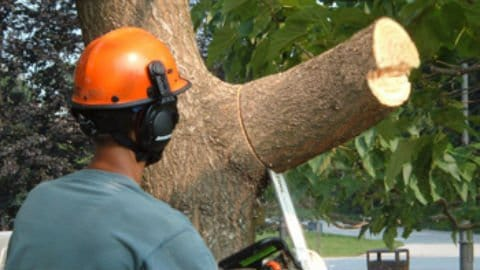 Fire-Rescue-First-Response-chainsaw-8-480