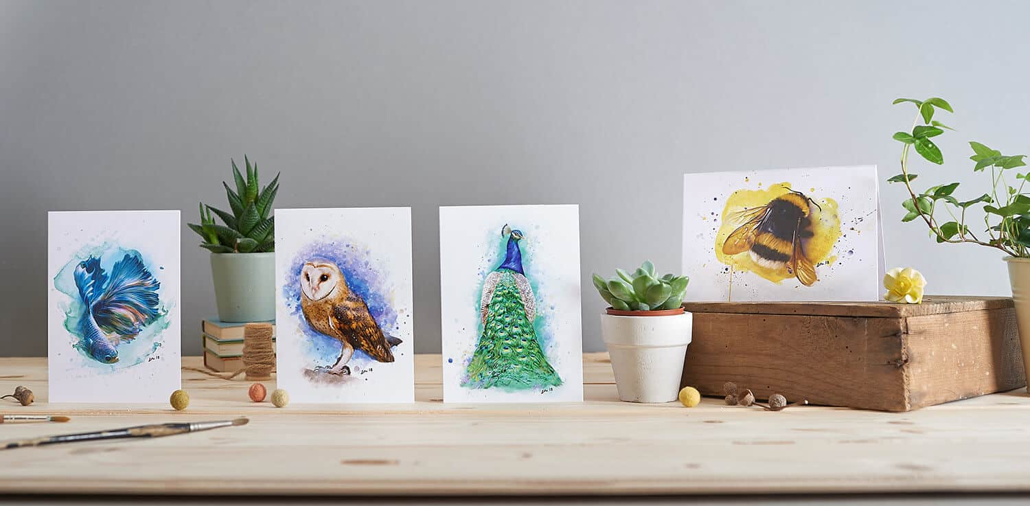 Styled product group shot of greetings cards by designers Little Hotch