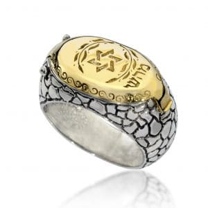 Gold and Silver Star of David Snake Ring