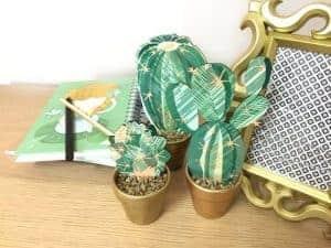 Trío Cactus decorativo