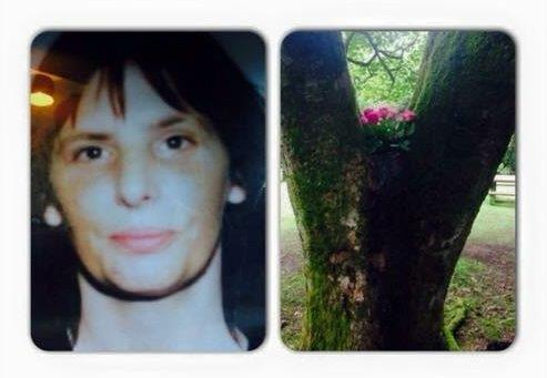 Murder of Jacqueline Oakes: Inquest to be resumed