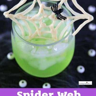 Spider Web Halloween Punch (VIDEO)