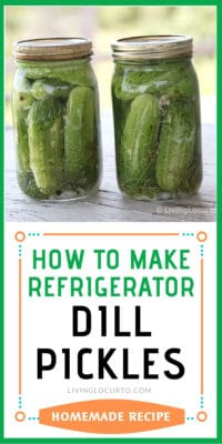 Refrigerator pickles recipe - Easy Dill Pickles homemade
