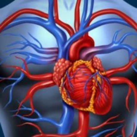 Hypertension (High Blood Pressure) – Risks, Side Effects and Complications