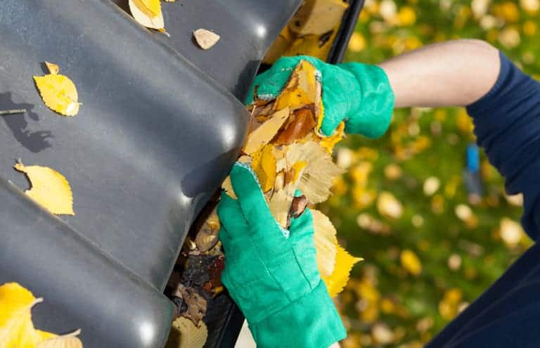 Gutter Cleaning Text