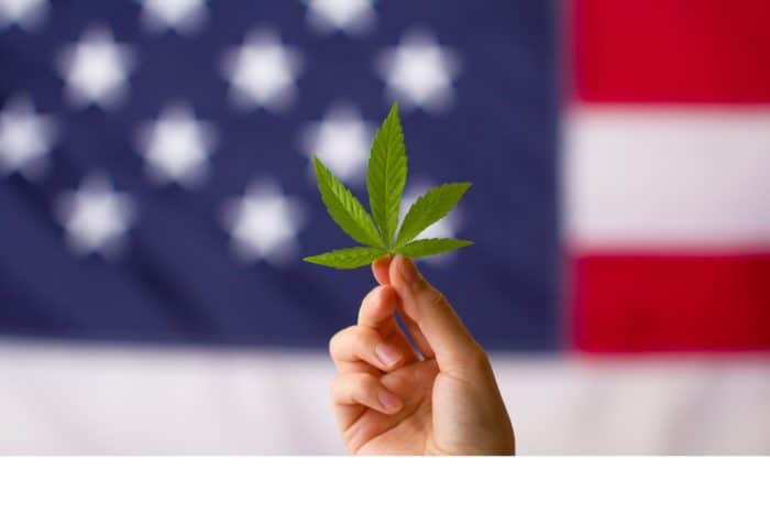 Cannabis and Legalization is as American Made as it Gets. What Gives?