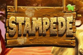 Game logo Stampede